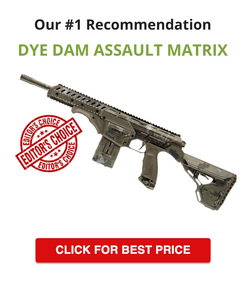Dye Dam Assault Matrix Paintball Marker - Editor's choice